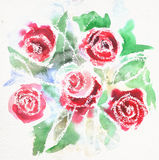 Watercolor painting of red roses Royalty Free Stock Photos
