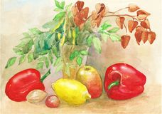 Watercolor painting sketch. Still life with lemon, Apple and pepper royalty free illustration