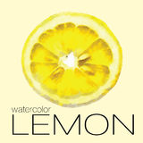 Watercolor painting slice of lemon Royalty Free Stock Images
