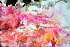 Pink dark spots, painting watercolor background, painting abstract colors royalty free stock photography