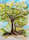 Watercolor painting of a tree on a spring day Royalty Free Stock Image