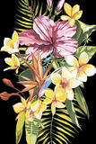 Watercolor painting tropical bouquet with exotic flowers. EPS 10 Stock Photos