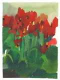 Watercolor painting tulips Royalty Free Stock Images