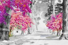 Watercolor painting of Tunnel trees with cherry blossom. Watercolor landscape painting black and white of Tunnel trees with pink cherry blossom, street view Stock Images
