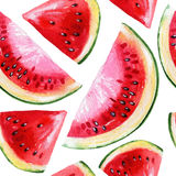Watercolor painting with watermelon Stock Images