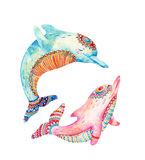 Watercolor pair of lovely dolphins isolated on white background. Stock Images