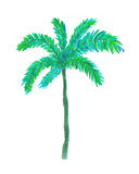 Watercolor palm tree. Hand painted watercolor illustration of palm tree vector illustration