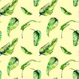 Watercolor palm tropical green leaves seamless pattern. Hand painted isolated on a yellow background Stock Photography