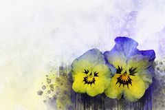 Watercolor pansies. Floral illustration of viola flowers on a vintage background. For design, print and fabric royalty free illustration