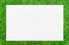 Watercolor paper texture background on green grass. Royalty Free Stock Images