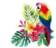 Watercolor parrot with exotic flowers and leaves Stock Photo