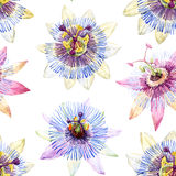 Watercolor passion flower pattern Royalty Free Stock Photography