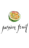 Watercolor passion fruit. Passion fruit, hand drawn - watercolor vector Illustration Royalty Free Stock Photography