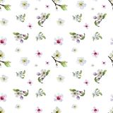 Watercolor pattern with aplle flowers royalty free illustration