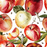 Watercolor pattern with apples and peaches Stock Images