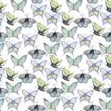 Watercolor pattern with batterfly Stock Images