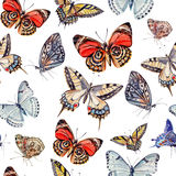 Watercolor pattern with beautiful butterflies Stock Photo