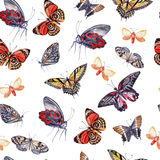Watercolor pattern with beautiful butterflies. Royalty Free Stock Photo