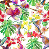 Tropical pattern. Watercolor pattern with birds, flowers and leaves