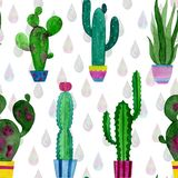 Watercolor pattern of cacti and succulents flowers vector illustration