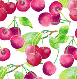 Watercolor pattern of cherry Royalty Free Stock Image