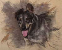 Watercolor pattern of a dog Stock Photography