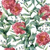 Watercolor pattern with eucalyptus, peony and berries. Hand painted floral branches with leaves, flowers isolated on Stock Photos