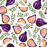 Watercolor pattern with figs vector illustration