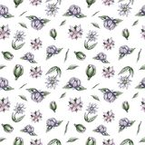 Watercolor pattern flowers royalty free illustration
