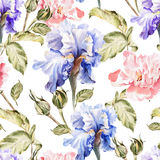 Watercolor pattern with flowers iris, peonies Stock Images