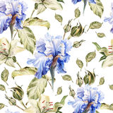 Watercolor pattern with flowers iris, roses, buds Royalty Free Stock Photos