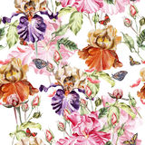 Watercolor pattern with flowers  iris, roses and  butterflies. Royalty Free Stock Photo