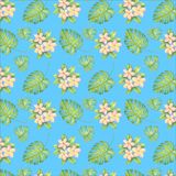 Watercolor pattern illustration, tropical flowers, pink and yellow plumeria, leaves stock illustration
