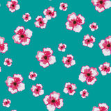 Watercolor. Pattern made from big and small watercolor pink flowers on the turquoise background Royalty Free Stock Photography