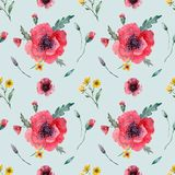 Watercolor seampless pattern poppies royalty free illustration