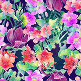 Watercolor Pattern Of Exotic Flowers Stock Photos
