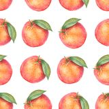 Watercolor pattern of oranges. Seamless pattern. Textile design. Handmade Royalty Free Stock Images