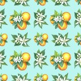 Watercolor pattern of oranges. Seamless pattern. Textile design. Handmade Royalty Free Stock Photography
