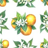 Watercolor pattern of oranges. Seamless pattern. Textile design. Handmade Stock Photo