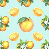 Watercolor pattern of oranges. Seamless pattern. Textile design. Handmade Stock Image