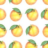 Watercolor pattern of oranges. Seamless pattern. Textile design. Handmade Stock Images