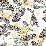 Watercolor pattern with  orchids, plants and butterflies. Stock Photography