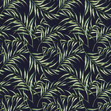 Watercolor pattern with palm tree leaves. Hand painted exotic greenery branch isolated on dark blue background Stock Images