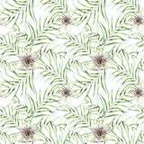 Watercolor pattern with palm tree leaves and passiflora. Hand painted exotic greenery branch and flowers. Botanical Royalty Free Stock Photography