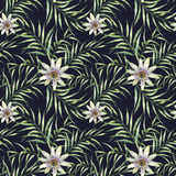 Watercolor pattern with palm tree leaves and passiflora. Hand painted exotic greenery branch and flowers  isolated o Royalty Free Stock Photos