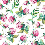 Watercolor pattern of roses. Seamless pattern of watercolor romantic roses on white background Stock Image
