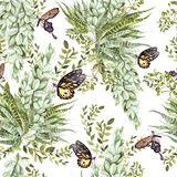 Watercolor pattern with succulents and butterfly . Illustration stock illustration