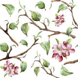 Watercolor pattern with tree branches and apple blossom. Hand painted spring ornament with floral elements with leaves. Isolated on white background. For design Stock Images
