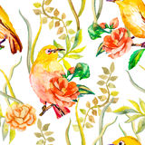 Watercolor pattern. Tropical birds and flowers Stock Photo