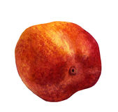 Watercolor Peach on White Background Royalty Free Stock Image